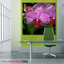 Foto Quadro in Canvas f.to 100x100